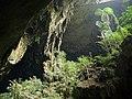 Deer Cave (20758751793).jpg