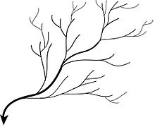 Image Result For Erosion Coloring Pages