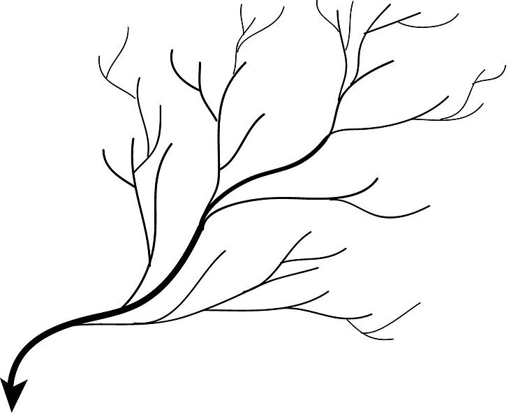 File:Dendritic Drainage pattern.jpg