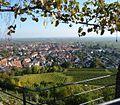 """Die Wachtenburg gilt auf Grund der Aussicht über die Rheinebene als """"Balkon der Pfalz"""". - panoramio.jpg"""