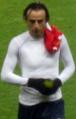 Dimitar Berbatov.png