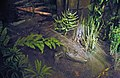 Diorama of a Permian forest floor - Eryops & vegetation 1 (43884994940).jpg