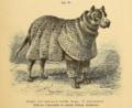 Dogge gejackt (Jagdpanzer) Beckmann.png
