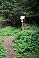 Dolomiti 07-2010 - panoramio (5).jpg