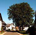 Dorfstrasse2.jpg