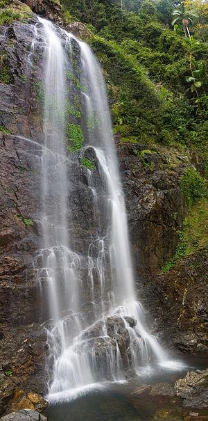 Dorrigo National Park - Image: Dorrigo National Park Cedar Falls