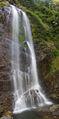 Dorrigo National Park Cedar Falls.jpg