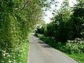 Drain Lane towards Tollingham - geograph.org.uk - 184772.jpg