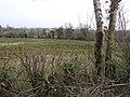 Drumgane Townland - geograph.org.uk - 1179543.jpg