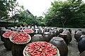 Drying Korean chillies 4.jpg