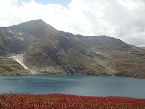 Lulusar-Dudipatsar National Park - Dudipatsar with red flowers