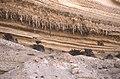 Dunst Oman scan0307.jpg