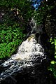 Dunvegan Castle waterfall - geograph.org.uk - 1466639.jpg