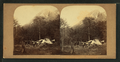 Eagle Cliff, White Mountains, from Robert N. Dennis collection of stereoscopic views.png