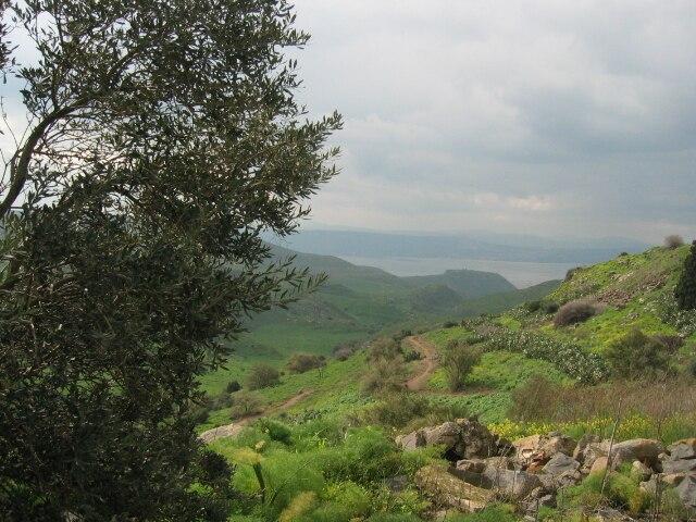 Ein Fiq, Golan Heights - 20040223-03