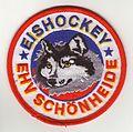 Eishockey Schönheide im Erzgebirge.jpg