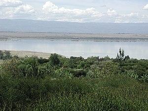 Lake Elmenteita - Image: Elementaita 2