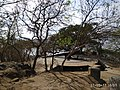 Elephanta Caves - 36.jpg