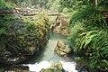 Emeishan, Leshan, Sichuan, China - panoramio - jetsun (31).jpg