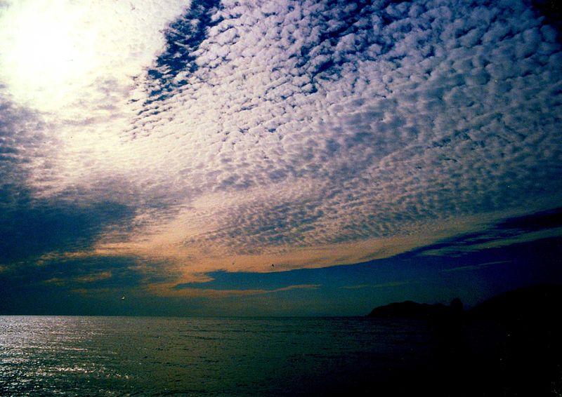 巻積雲です。 Wikiによれば、『温暖前線や熱帯低気圧が接近してくるとき最初にあらわれるのが巻雲