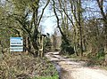 Entrance to Roydon Woods by Dilton Gardens - geograph.org.uk - 395894.jpg