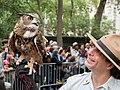 Eurasian eagle-owl with handler (44046).jpg