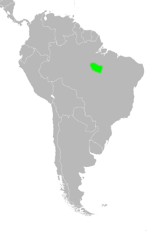 Map of South America showing the distribution of Euryoryzomys emmonsae in central Brazil.