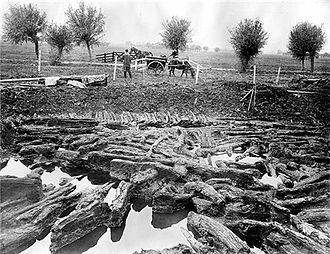 Glastonbury Lake Village - A photograph of the excavations at Glastonbury Lake Village