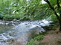 Exmoor , The River Barle - geograph.org.uk - 1507983.jpg