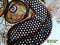 Eyes composed of a Diptera Nematocere ceratopogonidae 03.jpg