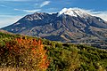 FALL COLOR AT MT ST HELENS-MT ST HELENS (23563521879).jpg