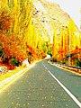 Fall in Hunza-basraa-7.jpg