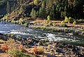 Fall on the Rogue River, Rogue River-Siskiyou National Forest (36275277284).jpg