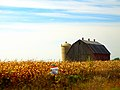 Farm with a Silo - panoramio (10).jpg
