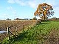 Farmland, Greys - geograph.org.uk - 626568.jpg