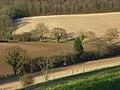 Farmland, Stokenchurch - geograph.org.uk - 745243.jpg