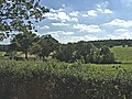 Farmland off Wagon Road, Barnet - geograph.org.uk - 44474.jpg