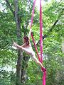 FayeFlam Aerial silks.jpg