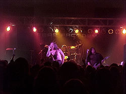 Fear Factory live 2005