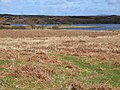 Fell Loch - geograph.org.uk - 166478.jpg