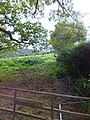Field beside Garlands Lane - geograph.org.uk - 2651696.jpg