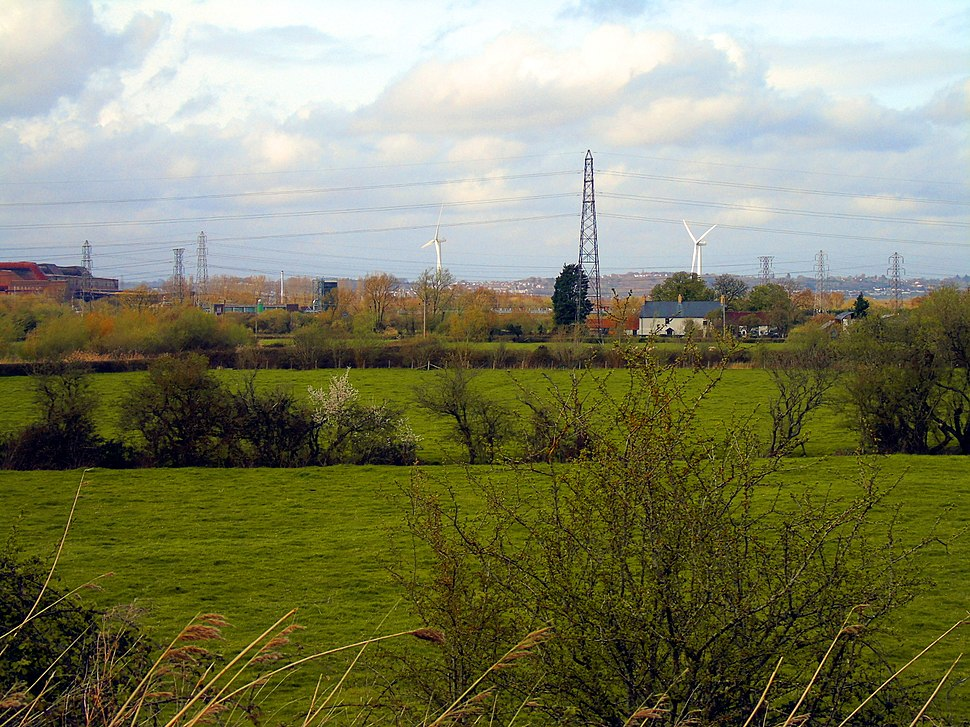 Field viewed from Woodland Trail at Newport Wetlands RSPB Reserve