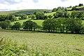 Fields north of Brynbach farm - geograph.org.uk - 856851.jpg