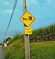 Flickr - Nicholas T - Pennsylvania Dutch Country.jpg