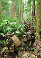 Flickr - Official U.S. Navy Imagery - U.S. Marines and Malaysian soldiers conduct an ambush exercise during Cooperation Afloat Readiness and Training Malaysia 2012..jpg