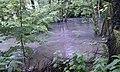 Flood 2013 in Czech Republic - river Výmola.jpg