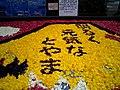 Flower carpet (11596369).jpg