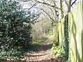 Footpath into Marrels Copse - geograph.org.uk - 732123.jpg
