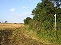 Footpath near Scrivelsby - geograph.org.uk - 580429.jpg