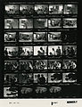 Ford B1087 NLGRF photo contact sheet (1976-08-16)(Gerald Ford Library).jpg